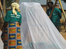 Installing Mosquito Nets