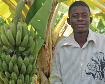 A young man tends to his banana plants in Zambia.