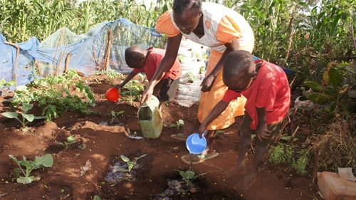 Millions of families in Kenya rely on agriculture to survive.