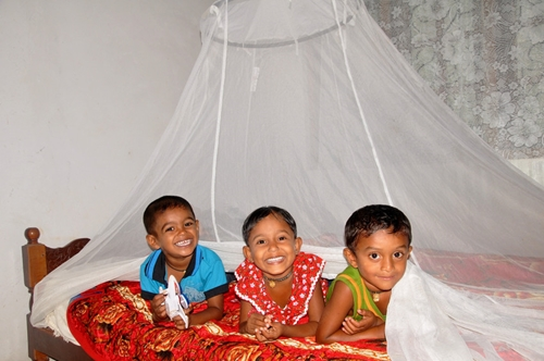 Mosquito nets are highly effective in halting the spread of malaria in developing nations.